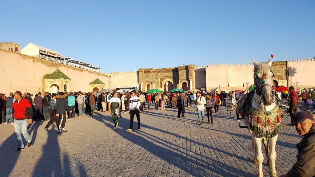 Día 46: Meknès, las ruinas y los no pude ir.
